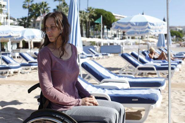 Marion Cotillard em Ferrugem e Osso. Sim, ela está sem a parte de baixo das pernas através de ótimo efeitos visuais.