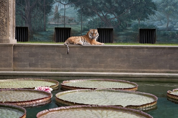 O lar do tigre Richard Parker na visão de David Gropman e Ang Lee em As Aventuras de Pi (photo by OutNow.CH)