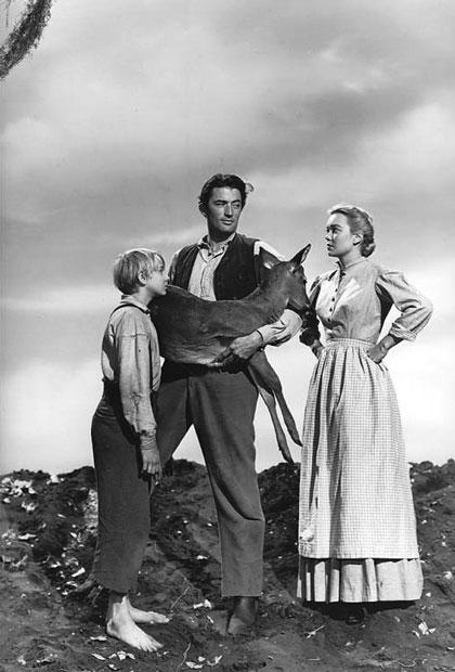 O jovem Claude Jarman Jr. em cena com os experientes Gregory Peck e Loretta Young no filme Virtude Selvagem. Sua performance lhe rendeu uma mini-estatueta do Oscar (photo by acertaincinema.com)