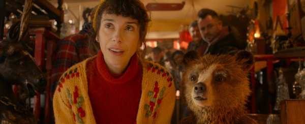 Sally Hawkins com o urso Paddington em As Aventuras de Paddington (photo by outnow.ch)