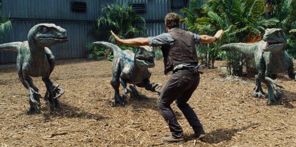 Chris Pratt trabalha com os velociraptors em Jurassic World: O Mundo dos Dinossauros (photo by outnow.ch)