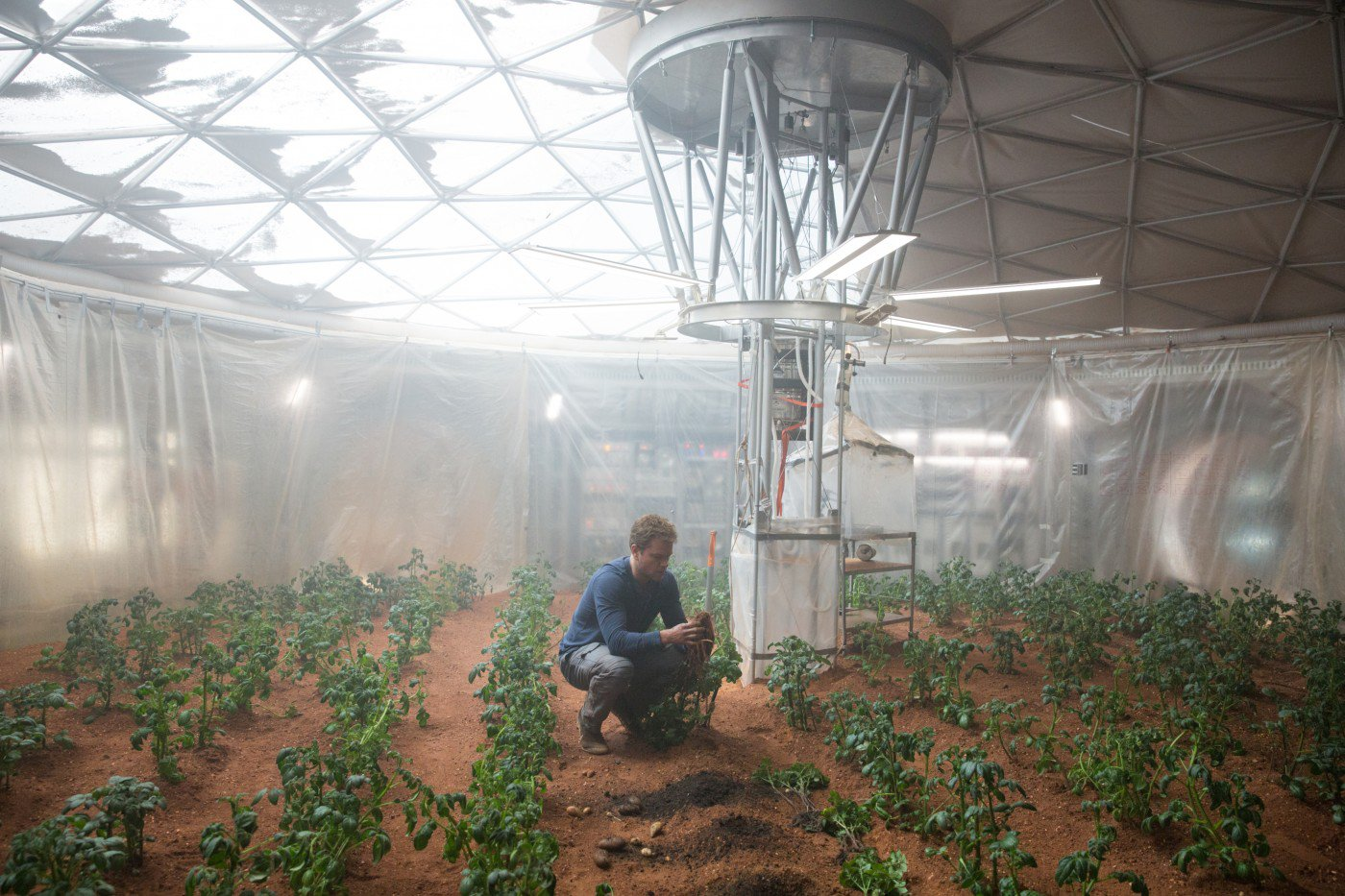 Mark Watney (Matt Damon) e sua plantação de batatas em Perdido em Marte (photo by cine.gr)