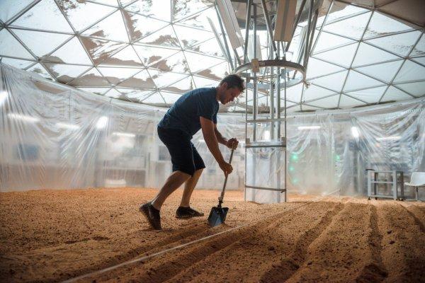 Matt Damon e sua plantação de batatas em Perdido em Marte (photo by cinemagia.ro)