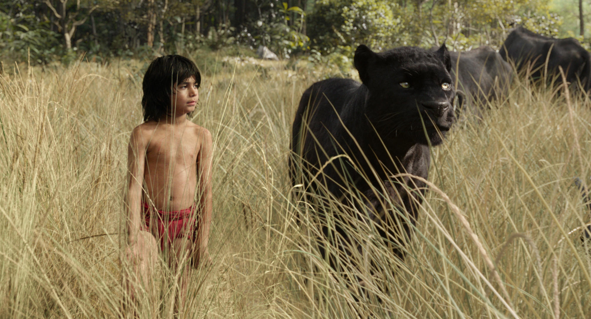 the-jungle-book-mit-neel-sethi.jpg